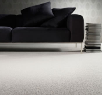 Cortazzo Bros - Carpet Product Image Gallery Slide